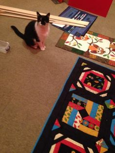 Of course, like everyone else i help out when there is work to be done.  Here I am ensuring the quilting exhibition is properly mounted.