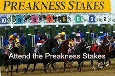 Attend the Preakness Stakes / Bucket List Ideas / Before I Die