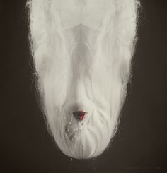cocoon © Leslie Ann O'Dell