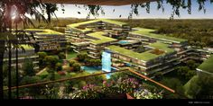 New York of affrica Latest Technology News, Smart City, Nature Reserve, African, New York, Cape Town, Building, Projects, Future