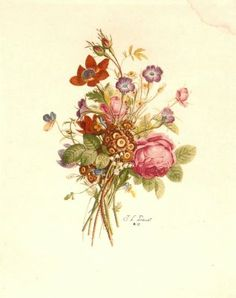Botanical print from: The Feathered Nest