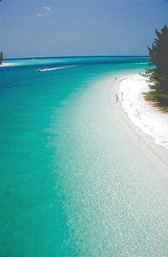 Das Glasklare Wasser der Anna Maria Inseln, Florida. Die passende Ausrüstung für eure Reise findet ihr bei uns: profibag.de