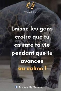 Story Quotes, New Quotes, Inspirational Quotes, Positive Attitude, Positive Life, Roots Quotes, French Language Lessons, Father Quotes, French Quotes