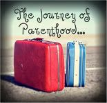 Chronicles of a Babywise Mom: Putting Baby First during the First Year