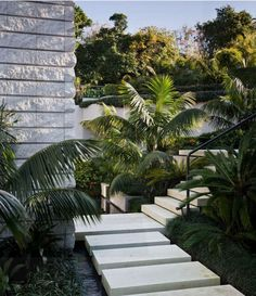 Limestone stepping stones and stairs float over a reflective pond.    www.shaferdesign.co.nz