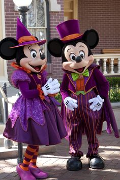 Purple lives in the happiest place in the world! Purple lives in  Disneyland.