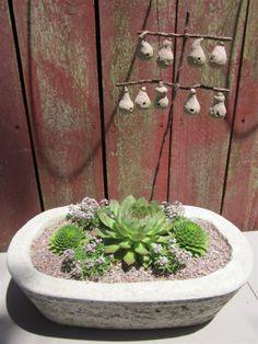 Simple Succulent Garden in Papercrete Container