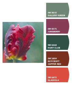 Red Color Schemes For Bedrooms paint colors from chip it!sherwin-williams | color