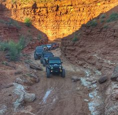 JEEP with Jeep Village® : Photo Jeep Trails, Jeep Life, Candyland, Outdoor Life, All Pictures, Camping, Spirit, Outdoor Living, Campsite