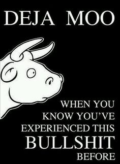 Deja Moo When you know you've experienced this bullshit before
