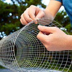 Form the wire mesh into a cylinder.
