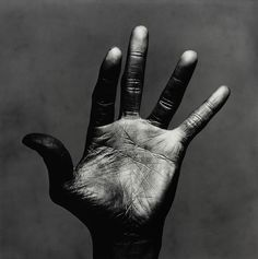 Miles Davis' instruments. New York City, July 1st, 1986.  Photographs by Irving Penn.