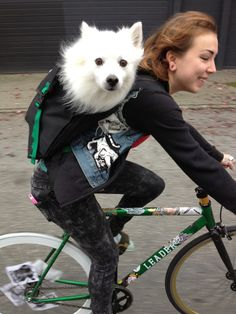 puppy backpack on Bikes Cycling Girls, Cycling Gear, Cycling Outfit, Cycling Clothing, Cycling Jerseys, Bicycle Race, Bicycle Girl, Fixed Gear Girl, Puppy Backpack