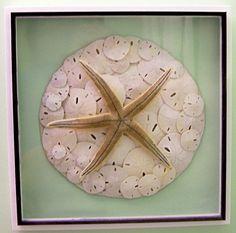 seashell arrangement.