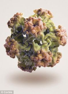 133 Best HPV News images in 2019 | Hpv vaccine, Throat cancer