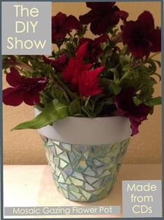 Earth Day -DIY Gazing Flower Pot | The DIY Show