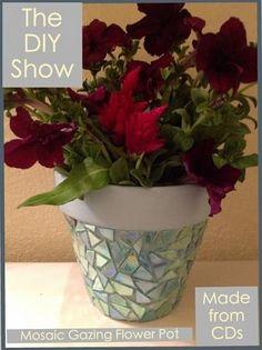 Earth Day -DIY Gazing Flower Pot   The DIY Show