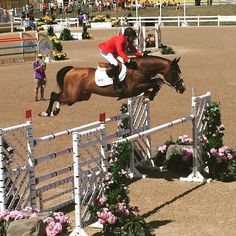 """panamgames: """" Eric Lamaze working with Coco Bongo to shoot over this jump with ease for Canada in Equestrian - Jumping! """""""