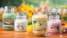 Buy 1 Get 1 FREE At Yankee Candle!!!