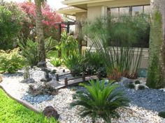 How to fill garden design with Florida native plants