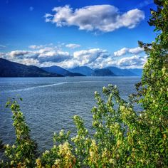 """See 241 photos and 12 tips from 898 visitors to Whytecliff Park. """"Check the tide info before coming and time your visit so you can come at low tide! Vancouver Tourism, Places Ive Been, Places To Visit, Mountains, Park, Nature, Travel, Naturaleza, Viajes"""
