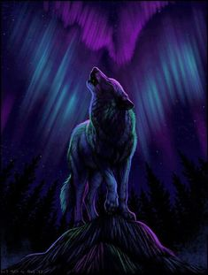♥ Wolf Art - Purples & Blues of Night. - ♥ Wolf Art – Purples & Blues of Night. Anime Wolf, Wolf Love, Fantasy Wolf, Fantasy Art, Tier Wolf, Wolf Spirit Animal, Wolf Wallpaper, Bts Wallpaper, Iphone Wallpaper
