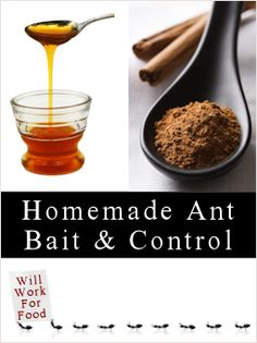 Homemade Ant Bait, Repellants & Sprays.  LOTS of recipes using various things (vinegar, essential oils, borax & peanut butter, yeast, cucumber peels, spices, etc.)