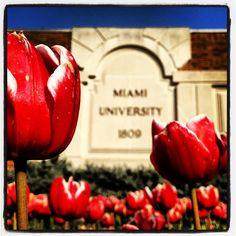 Miami University #1809 #miamiu #loveandhonor