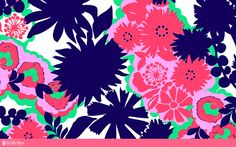 An Unofficial Collection of Lilly Pulitzer Prints