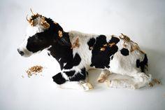 The Golden Calf by Kelly McCallum