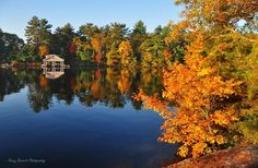 Lake Muskoka in autumn Autumn, River, Outdoor, Outdoors, Fall, Outdoor Games, Outdoor Living, Rivers