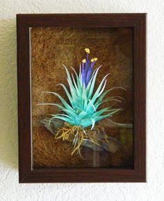 Hand painted Tillandsia paper sculpture by artist by TyrantKingdom