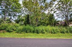 Wooded Lakefront Lot at Tanasi Coves