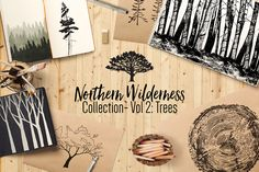 Northern Wilderness: Trees - Illustrations - 1