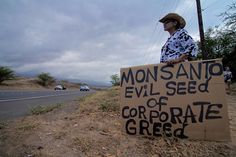 Five Million Brazilian Farmers take on Biotech Giant Monsanto