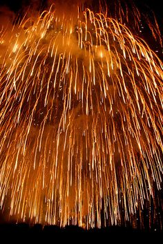 a display of fireworks this one is about 650 diameter. Fireworks Photography, Fireworks Show, Fireworks Pictures, Fireworks Craft, Or Noir, Fire Works, 4th Of July Celebration, Bonfire Night, Nouvel An