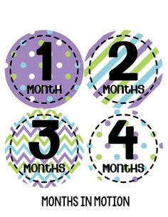Baby Girl Monthly Baby Stickers Style #274