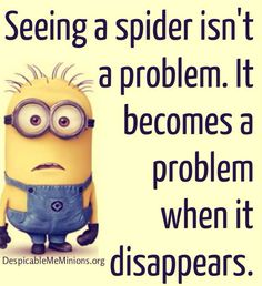 For every female friend in my life that doesn't love spiders as much as I do. . .