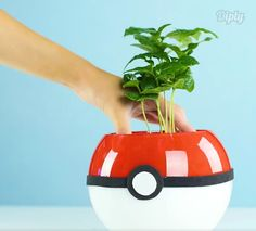 Catch 'em all with this DIY Pokemon planter!