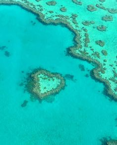 #heartreef #greatbarrierreef #whitsundays #queensland #dreamcometrue #zhuzhuandoppa #JulianainAustralia #Australia #nicetomeetyouheartreef #checklistdone #heartreef #travelgram #travel by julianayueyue http://ift.tt/1UokkV2