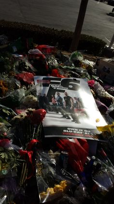 Hundreds gather for memorial and tribute to Paul Walker and Roger Rodas