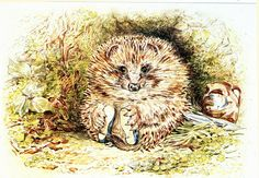 Hedgehog--Beatrix Potter