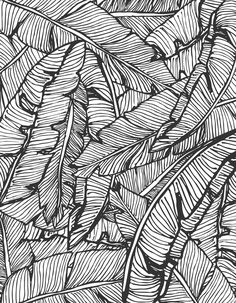 Seamless pattern design with hand drawn banana leaves, vector illustration. Black and white pattern, vintage style, from ink pen hand drawing by DesigndN. Like getting lost in a jungle.