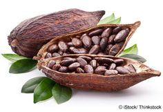 Learn more about cacao nutrition facts, health benefits, healthy recipes, and other fun facts to enrich your diet. http://foodfacts.mercola.com/cacao.html