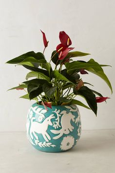 Concha Garden Planter - anthropologie.com
