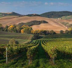 Tuscany, autumn | Daniel Kordan