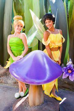 Tinker bell and Iridessa 4 Person Halloween Costumes, Tinkerbell Halloween Costume, Couple Halloween, Disney Faries, Tinkerbell Disney, Disney Costumes, Disney Outfits, Disney Timeline, Disneyland Parks