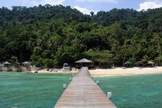 Japamala Resorts – Baby sharks in paradise