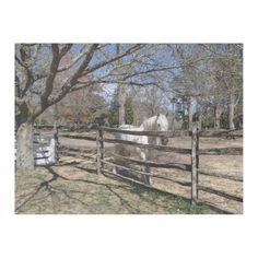 Pretty White Horse Fleece Blanket - horse animal horses riding freedom