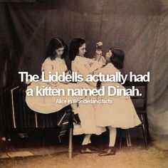 Alice in Wonderland facts: fact #1  The Liddells actually had a kitten named Dinah.